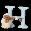 Peter Rabbit Alphabet Letters: H - Mrs. Tiggy-winkle
